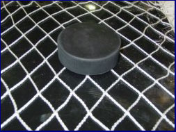 Hockey Barrier Safety Netting (Priced by size)